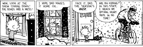 Calvin and Hobbs talk to dad about cycling in the snow.
